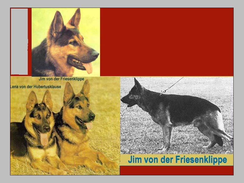 Enlarge Picture - JIM VON DER FRIESENKLIPPE